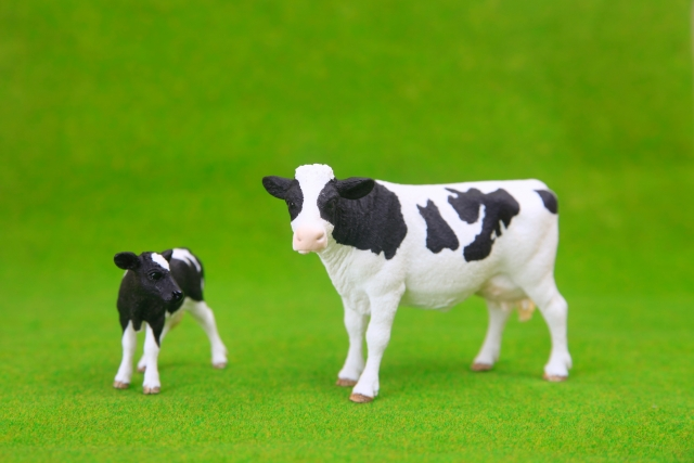 2021年元旦 牛の親子